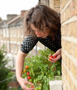 Naomi looking down picking tomatoes