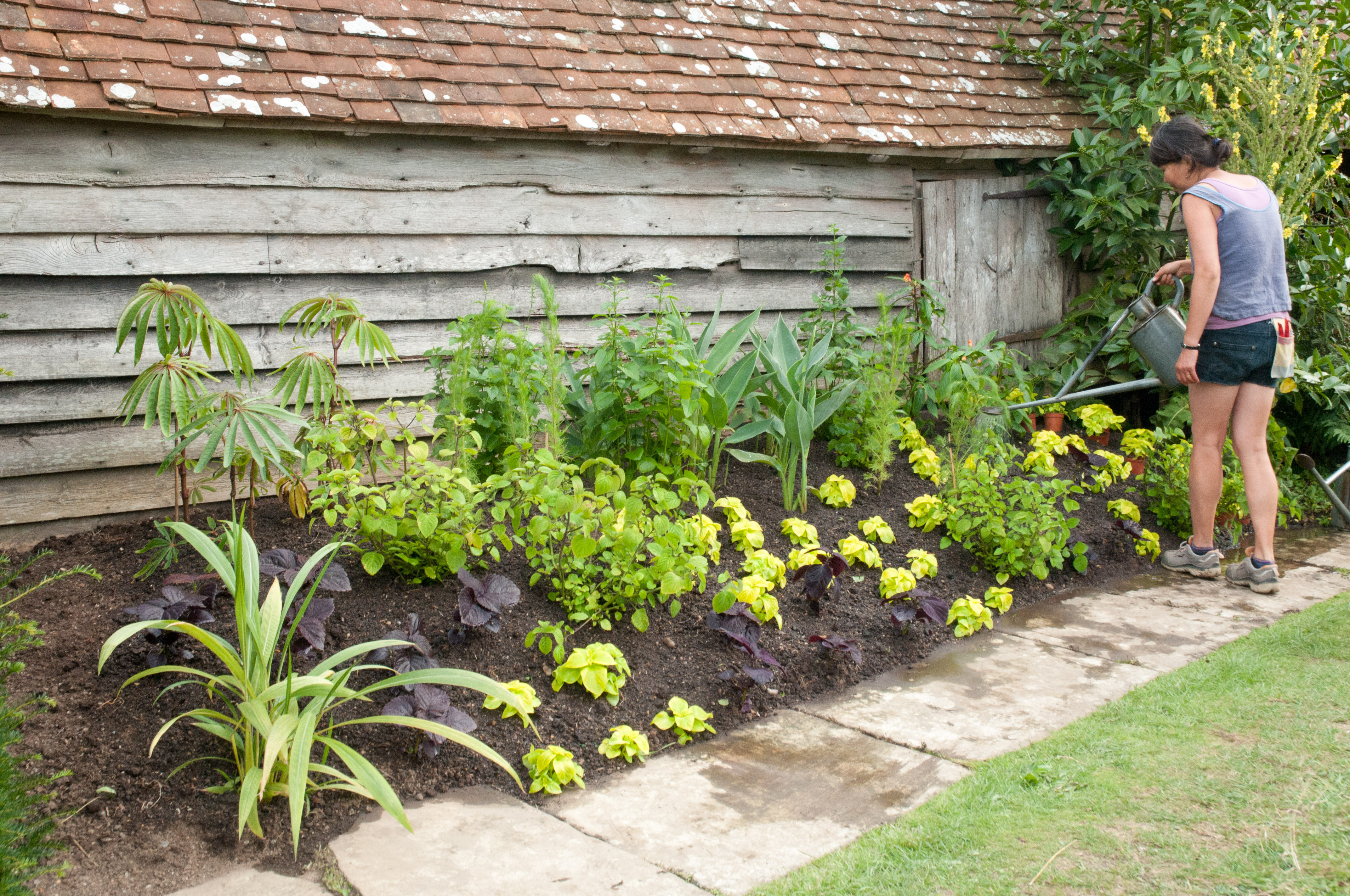 Great dixter in august out of my shed for Herbaceous border design examples