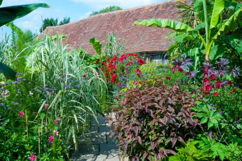 The Exotic Garden at Great Dixter, August 2011