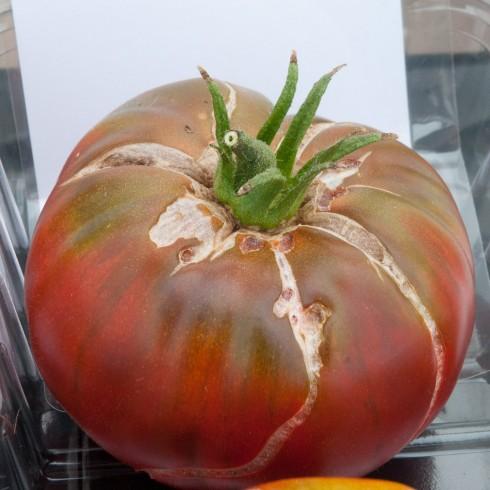tomato black krim out of my shed. Black Bedroom Furniture Sets. Home Design Ideas