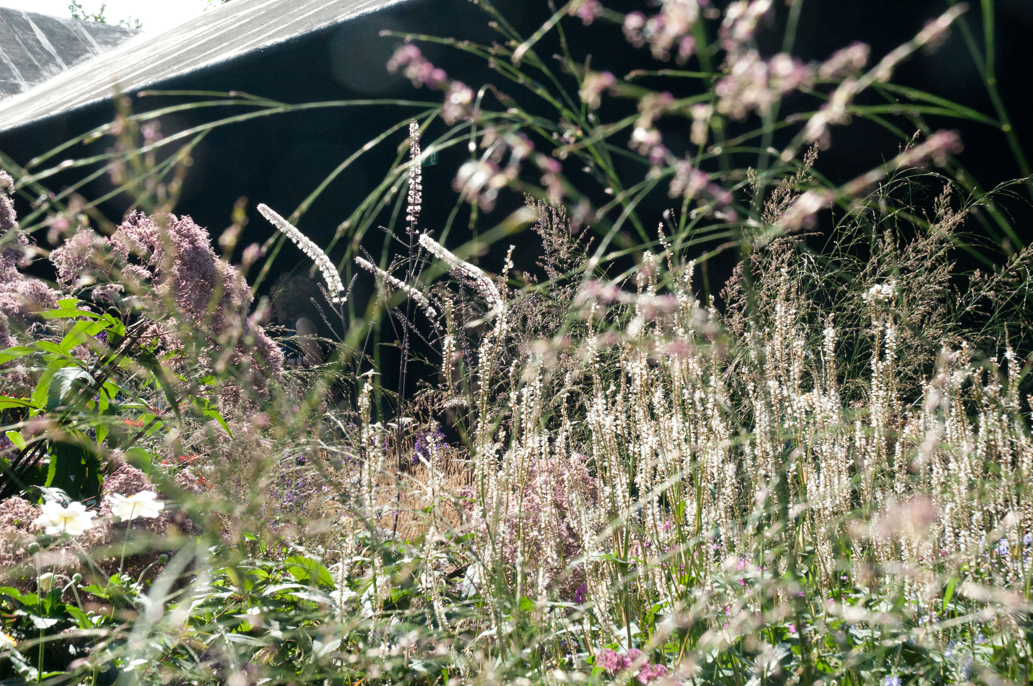 Piet oudolf s london prairie planting out of my shed for Piet oudolf serpentine gallery
