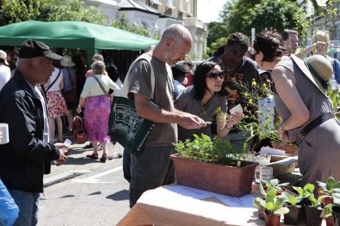 Chelsea Fringe Cake Sunday-giving away seeds