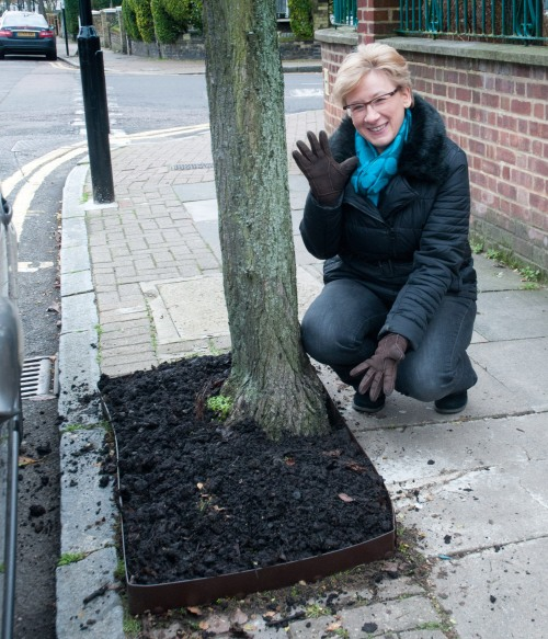 Nikki with tree pit fully edged with Everedge Everedge metal edging_