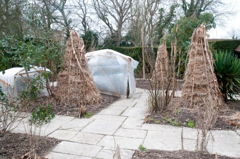 Exotic Garden all wrapped up at Great Dixter