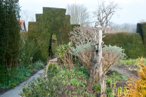 Yew hedging creating drama and defining differenet areas at Great Dixter