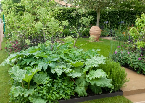 Fruit and veg on Adam Frost's Homebase garden