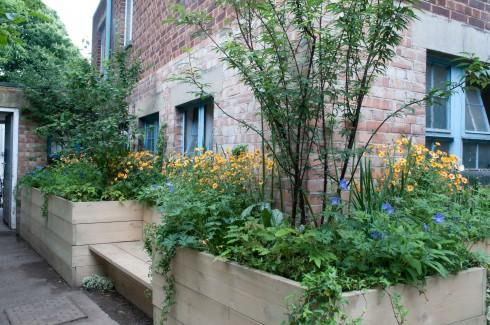 Anmnarose's WC Garden in Peckham