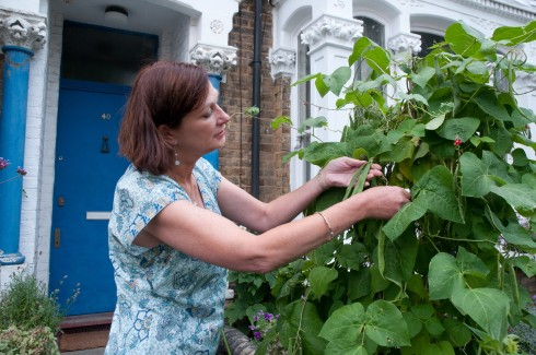 Annie picking beans in her front garden