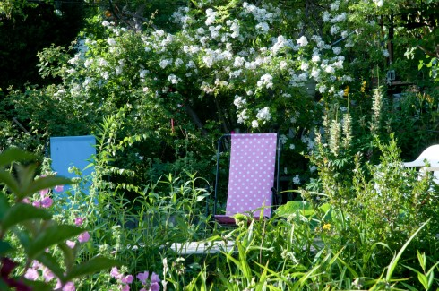 Chairs to relax on at a Stockholm allotment