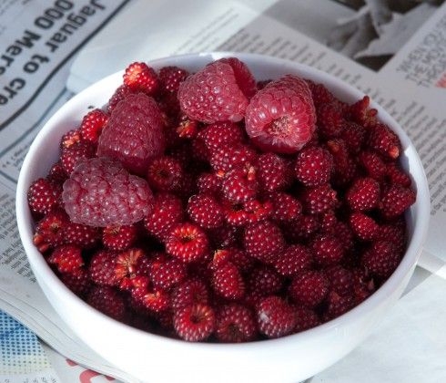 japanese Winberries and raspberries