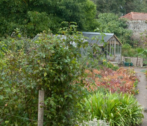 Greenhouses in Wiveton Hall Kitchen Garden