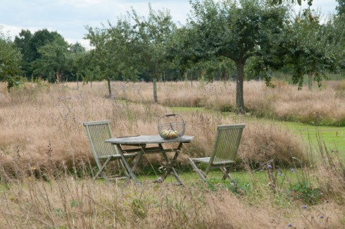 Jp Orchard with table and apples