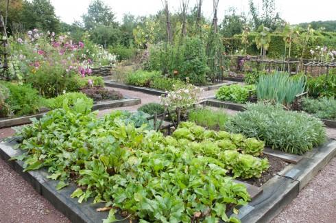 Chunky veg beds at at Prieure D'Orsan