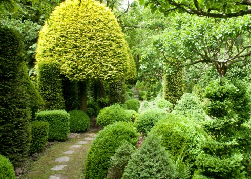 Topiary walk at Jardins des Sericourt