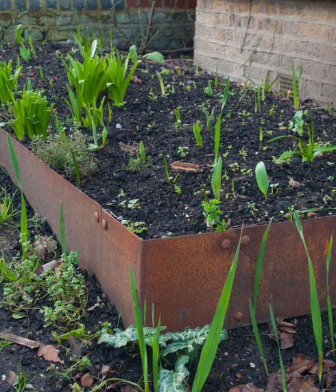 Rsuted steel raised bed