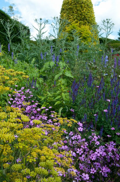 Long border at Great Dixter June 2016