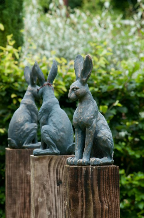 3-rabbits-at-bryans-ground