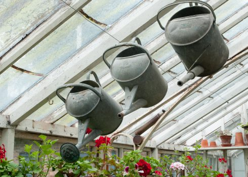 hanging-watering-cans-at-bryans-ground