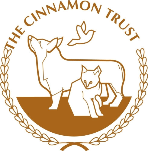 C-Trust logo.JPG